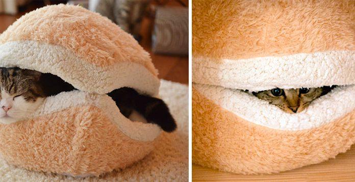 貓咪的漢堡床