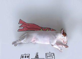 畫插畫的狗9
